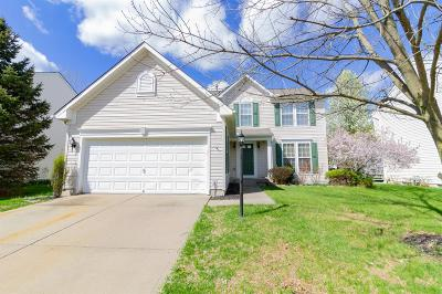 Single Family Home For Sale: 372 Indian Pointe Drive