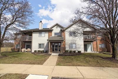 West Chester Condo/Townhouse For Sale: 8824 Eagleview Drive #6