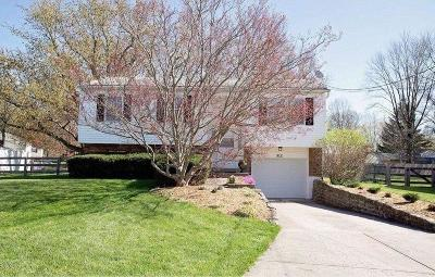 Single Family Home For Sale: 312 Albright Drive