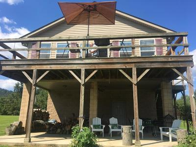 Adams County, Brown County, Clinton County, Highland County Single Family Home For Sale: 382 Jenkins Lane