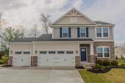 Hamilton Twp Single Family Home For Sale: 2575 Morgan Drive
