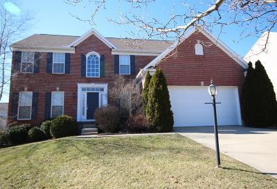 Springboro Single Family Home For Sale: 81 Stanton Drive