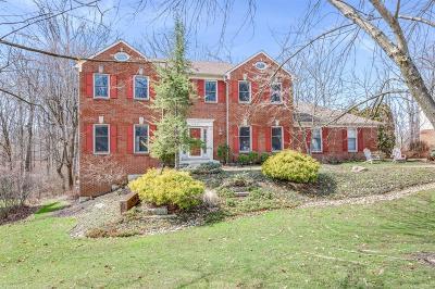 Blue Ash Single Family Home For Sale: 10931 E Allenhurst Boulevard
