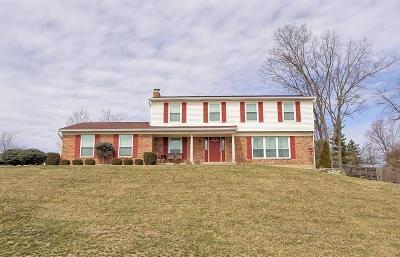 Fairfield Twp Single Family Home For Sale: 3814 Dust Commander Drive