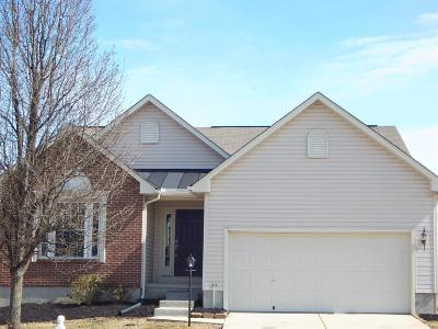 Hamilton Twp Single Family Home For Sale: 5152 Appaloosa Circle