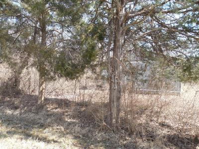Adams County, Brown County, Clinton County, Highland County Residential Lots & Land For Sale: 11178 Colthar Road
