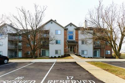 West Chester Condo/Townhouse For Sale: 8939 Eagleview Drive #3
