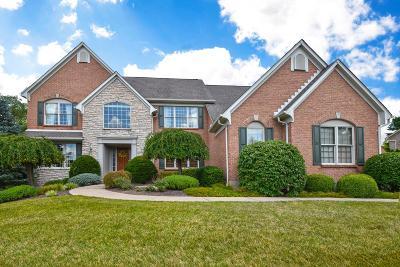 Single Family Home For Sale: 808 Walnut Ridge Drive