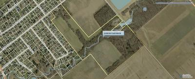 Clinton County Residential Lots & Land For Sale: 7403 Fairground Road