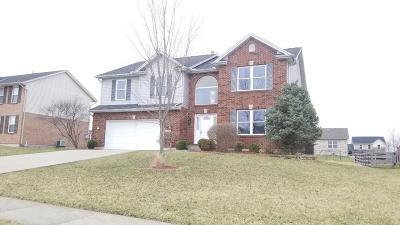 Single Family Home For Sale: 409 Thomas Pointe Court