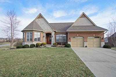 Single Family Home For Sale: 10230 Plantation Pointe Drive