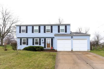Delhi Twp Single Family Home For Sale: 4223 Cloverhill Terrace