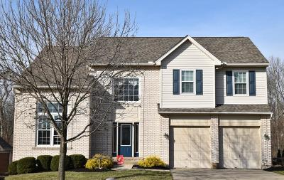 Anderson Twp Single Family Home For Sale: 7580 Delas Cove