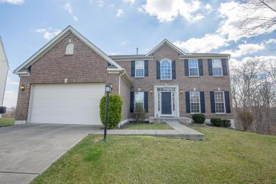 Clermont County Single Family Home For Sale: 5184 East View Drive