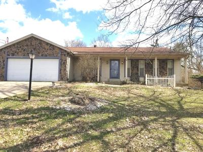 Cincinnati Single Family Home For Sale: 2700 Little Dry Run Road