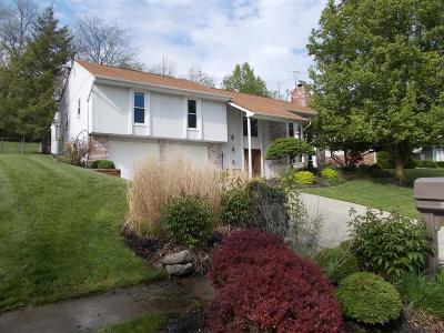 Hamilton Single Family Home For Sale: 680 Glenway Drive