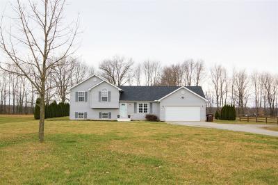 Warren County Single Family Home For Sale: 587 Blazing Trail