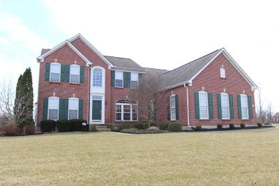 Turtle Creek Twp Single Family Home For Sale: 526 Sage Run Drive