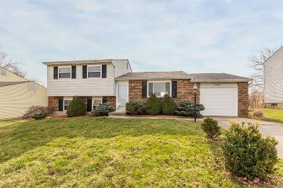 Cincinnati Single Family Home For Sale: 2891 Spruceway Drive