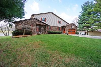 Brown County Single Family Home For Sale: 584 Lorelei Drive