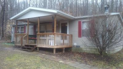 Adams County, Brown County, Clinton County, Highland County Single Family Home For Sale: 80 Saylor Road