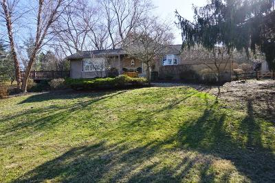 Cincinnati Single Family Home For Sale: 6118 Wilmer Road