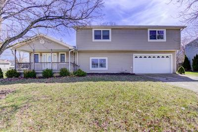 Single Family Home For Sale: 6879 Socialville Foster Road
