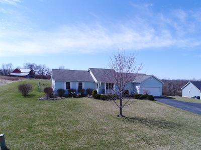 Single Family Home For Sale: 13355 Wyatt Falls Court