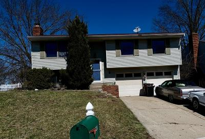 Delhi Twp Single Family Home For Sale: 4230 Champdale Lane