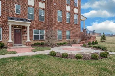 Springboro Condo/Townhouse For Sale: 406 Brownstone Row