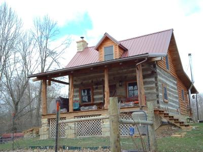 Clinton County Single Family Home For Sale: 461 Cumberland Road
