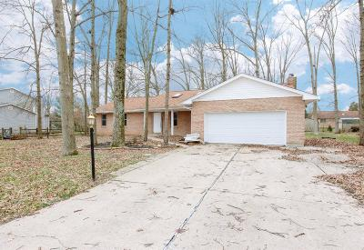 Single Family Home For Sale: 1579 Orchard Valley Drive