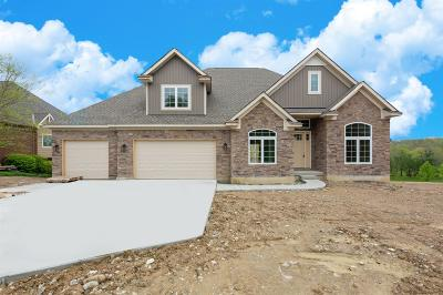 Deerfield Twp. Single Family Home For Sale: 8048 River Vista Court