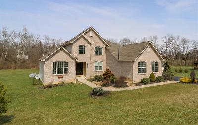Clinton County Single Family Home For Sale: 94 Walnut Glen Drive