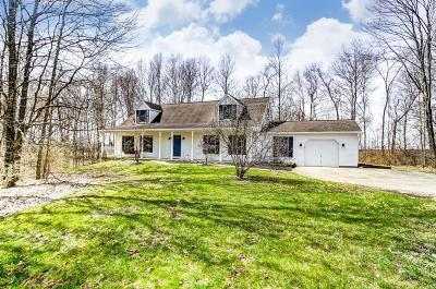 Hamilton County, Butler County, Warren County, Clermont County Single Family Home For Sale: 10841 New Biddinger Road