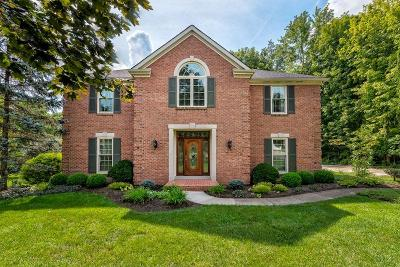 Single Family Home For Sale: 9293 Witherbone Court
