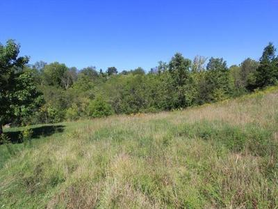 Colerain Twp Residential Lots & Land For Sale: 6384 Conifer Lane