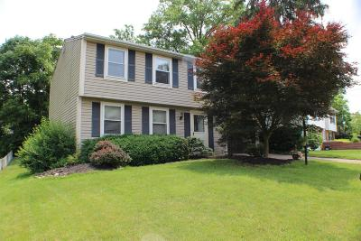 Single Family Home For Sale: 1053 Azure Court