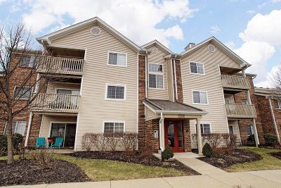 Loveland Condo/Townhouse For Sale: 120 Carrington Lane #205
