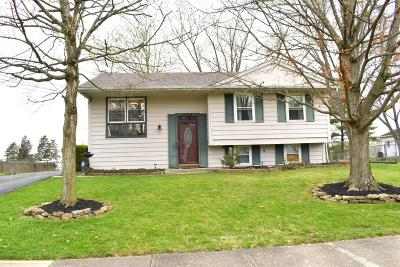 Single Family Home For Sale: 6055 Arcade Drive