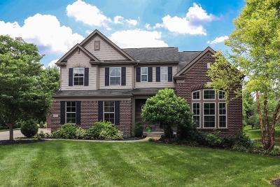 Single Family Home For Sale: 10241 Elmfield Drive