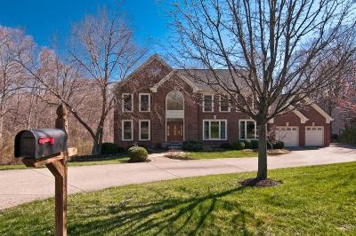 Single Family Home For Sale: 6896 Treeridge Drive