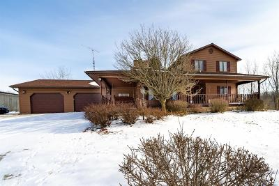 Adams County, Brown County, Clinton County, Highland County Single Family Home For Sale: 262 Nelson Road