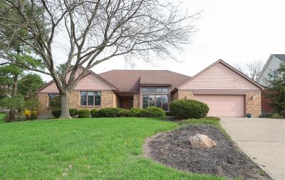 Single Family Home For Sale: 3600 Fawnrun Drive