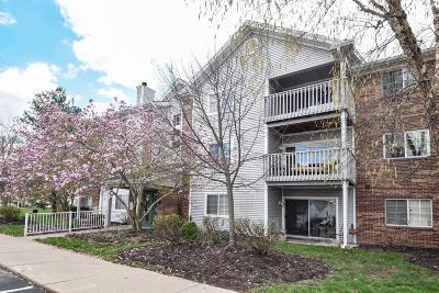 Loveland Condo/Townhouse For Sale: 210 Carrington Place #207