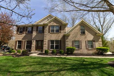 Single Family Home For Sale: 1745 Cottontail Drive