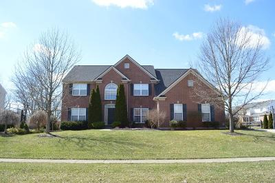 Liberty Twp Single Family Home For Sale: 6680 Tree View Drive