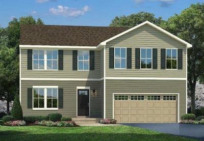 Single Family Home For Sale: 46 Shady Creek Lane