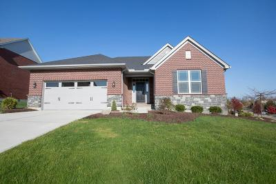 Liberty Twp Single Family Home For Sale: 38 Alta Court #AT38B