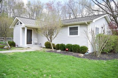 Single Family Home For Sale: 5024 Brant Road